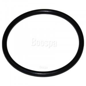 Seal for Pump Union 2'' or 63mm