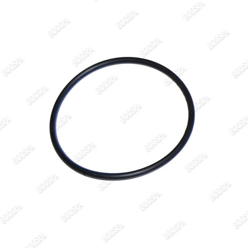 O-ring Seal 105mm