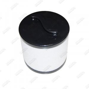 Filtre spa Silver sentinel ArticSpas PP0011