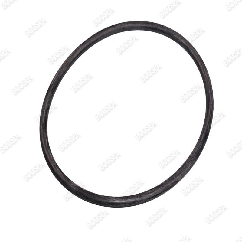 Lid O-Ring for BALBOA Argonaut spa pump