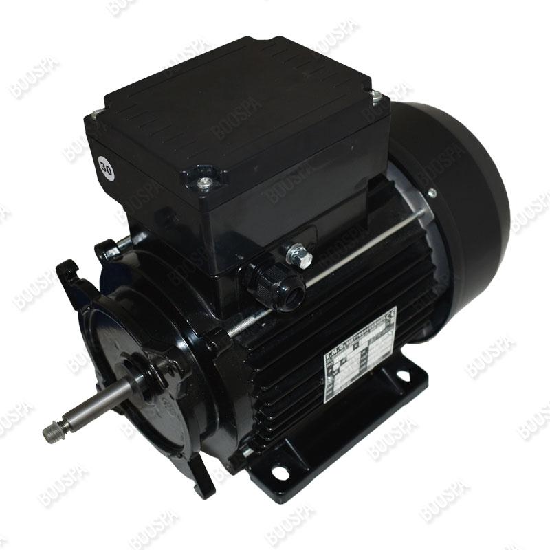 Motors for 56 Frame spa pumps