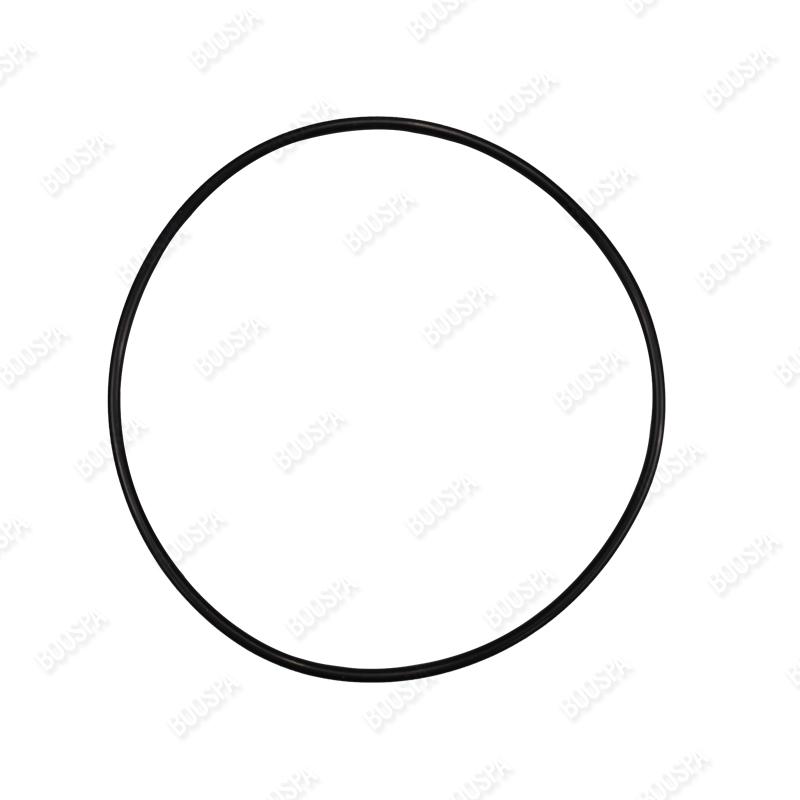 15cm faceplate O'ring seal for PB Sirem pump
