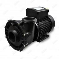 2-Speed Massage Pump WP250II - 2.5HP