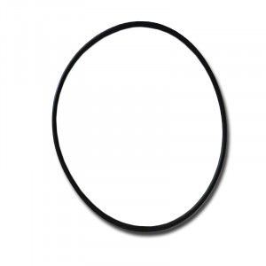 Faceplate O-ring for Executive Euro Pump