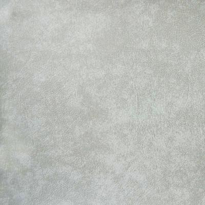 Couleur de la couverture